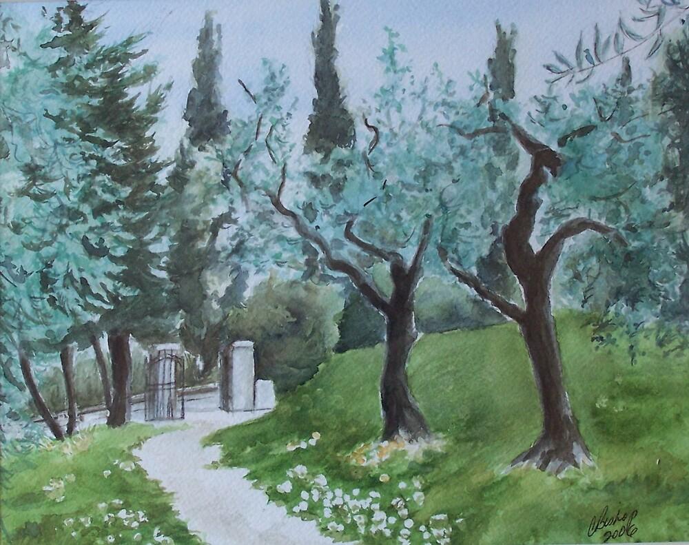Olive Grove by Carolyn Bishop