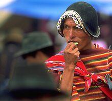 Coca leaf, Bolivia by Phillip  McCordall