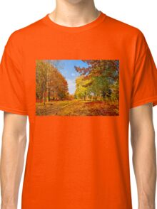 Autumn colors of nature Classic T-Shirt