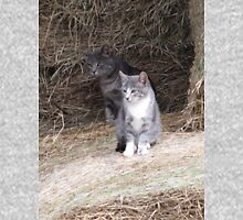 Gray Cat and KIttens on Farm Hay Photograph Unisex T-Shirt