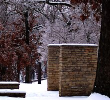 Snow Scene with Icy Trees by Sherryness