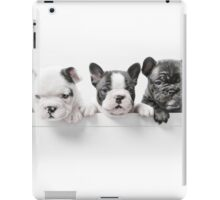 Over The Wall iPad Case/Skin