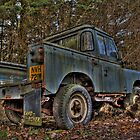 Old Land Rover's Never Die...... by Dave Warren