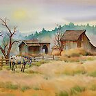 OLD BARN & APPALOOSA  by sharonsharpe