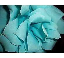 Paper Flower Photographic Print