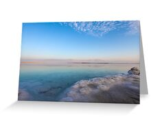 Israel, Dead Sea, salt crystalization Greeting Card