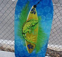 Boogie Board by karen66