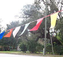 Flags by karen66
