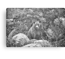Grizzly in the Mist - Black & White Canvas Print