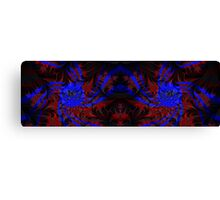 Visual Psychedelia Series 11 Canvas Print