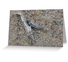 Desert soil Greeting Card
