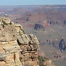 Mather Point by Chris Clarke