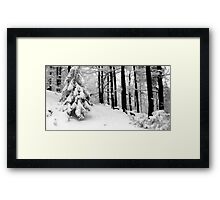 crisp and white Framed Print