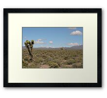 Tikaboo Valley, NV Framed Print