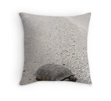 Tortoise on the road Throw Pillow