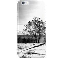 Winter In Ontario iPhone Case/Skin