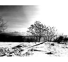 Winter In Ontario Photographic Print
