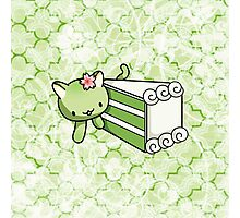 Gateau Matcha Kitty Photographic Print