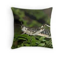 Hello Grasshopper! Throw Pillow