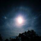 Sundogs, Parhelic Circle and Solar Halo. by Ern Mainka