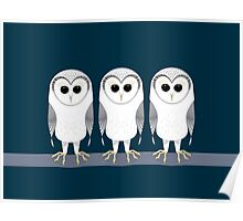 OWL TRIPLETS Poster