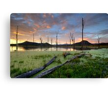 Even In The Quietest Moments Canvas Print