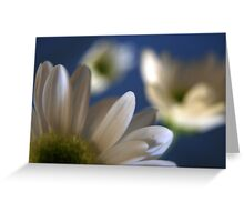 White... Greeting Card