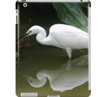 Casting a shadow Cairns Qld Australia iPad Case/Skin