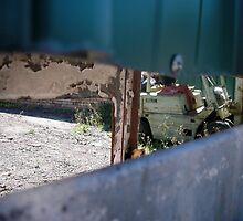 through the fence by KellyThomas
