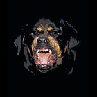 Rottweiler by nemanjagasic