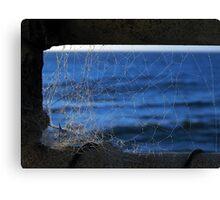 WET BLUE WEB Canvas Print