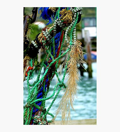 Fisherman's Jeweled Necklace - NZ - Port Chalmers Photographic Print