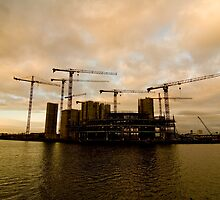 Island of the Cranes by mwillshaw