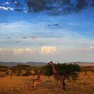 Serengeti, Tanzania by Damian Kuczynski