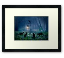 The Witches Cats Framed Print