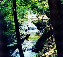 Falls through the Trees by buddykfa