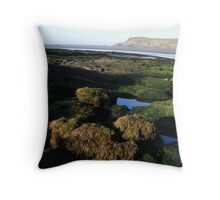 Rock pools Throw Pillow