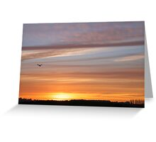 Bird flying home to roost in Autumn sunset Greeting Card