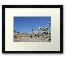 Freeman Canyon Framed Print