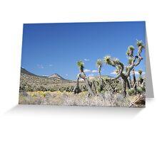 Freeman Canyon Greeting Card