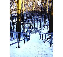 ravine stairs Photographic Print