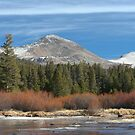 Tuolumne River 2 by Chris Clarke