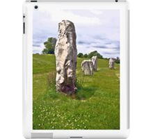 Avebury Circle D iPad Case/Skin