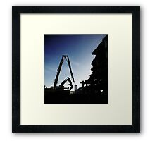 On the Cat Walk  Framed Print