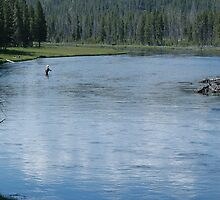 Flyfishing in Wyoming by cameraperson