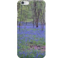 Beautiful bluebells number 2 iPhone Case/Skin