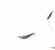 Those Bedroom Eyes... by Quigi