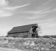 Kentucky Barns by Cynthia Baker