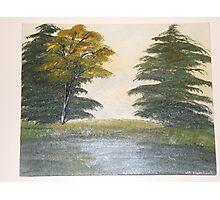 Twin Pines Photographic Print