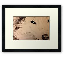 White Wolf with Blue Eyes Framed Print